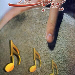 شیوه تمبک نوازی / محمود رفیعیان